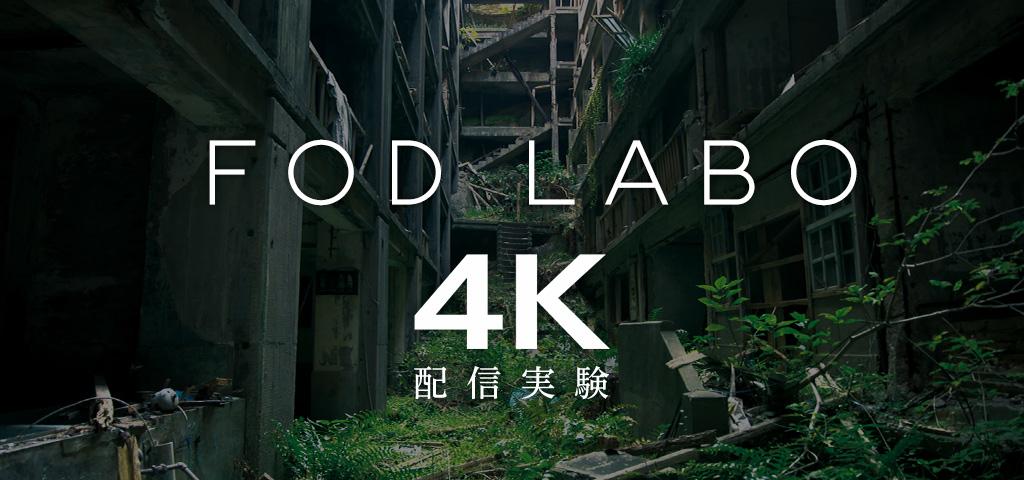 FOD会員様向け公開実験室 FOD LABO
