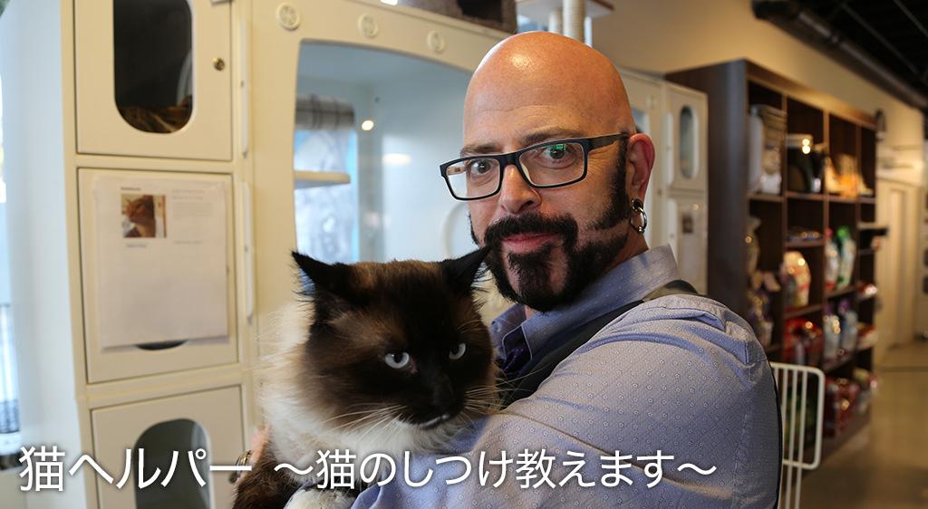 猫ヘルパー S1~猫のしつけ教えます~
