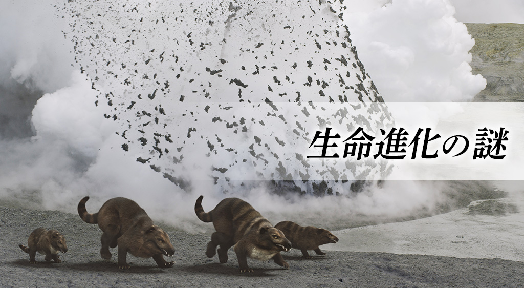 生命進化の謎