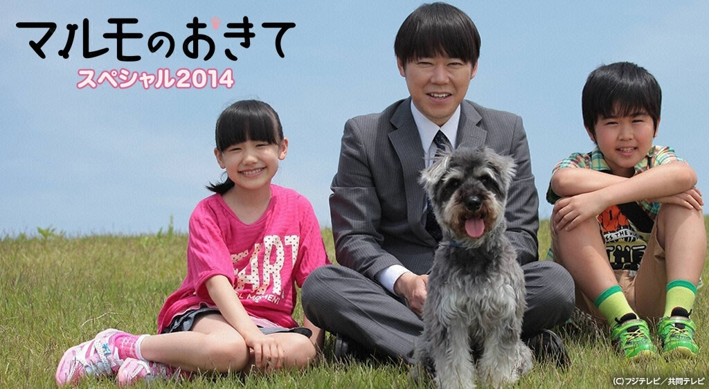 マルモのおきてスペシャル 2014