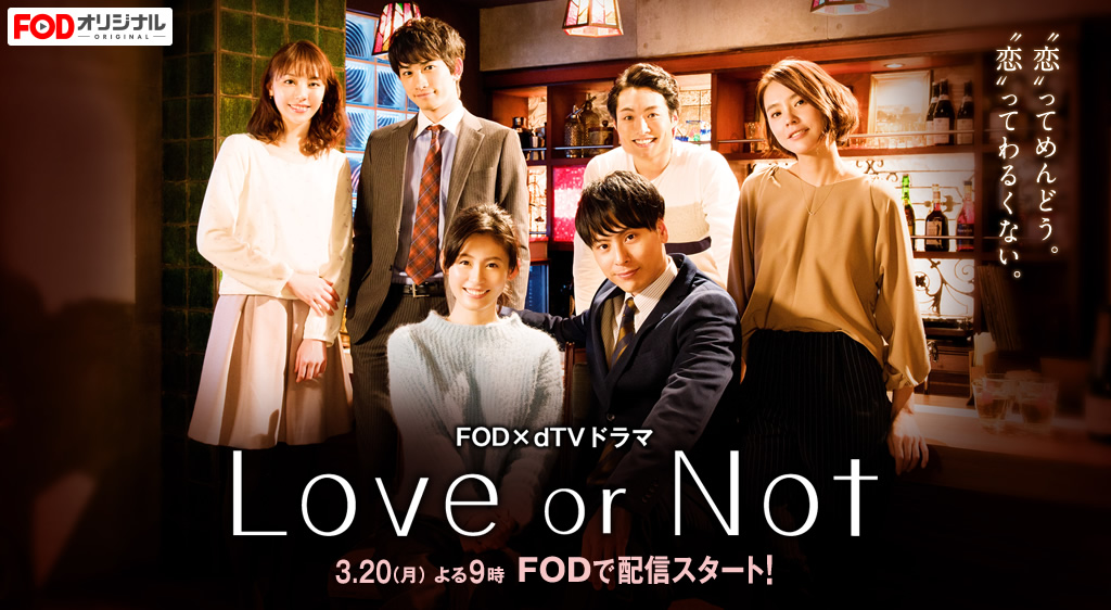Love or Not