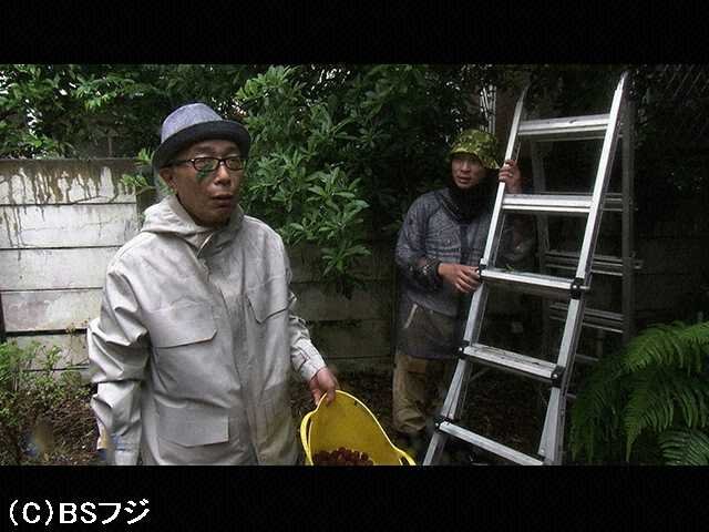 2016/8/9 雨ニモ負ケズ、風ニモ負ケズ&私を突き動か…