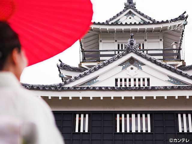 #59 2017/7/9放送 にっぽん城紀行 浜松城・1