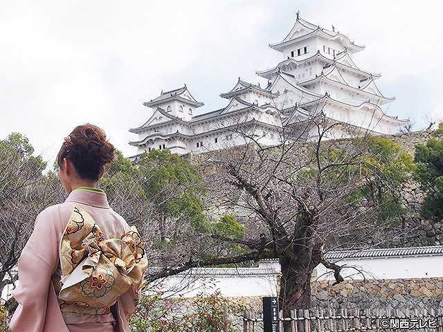 #2 2016/4/10放送 にっぽん城紀行 姫路城・2
