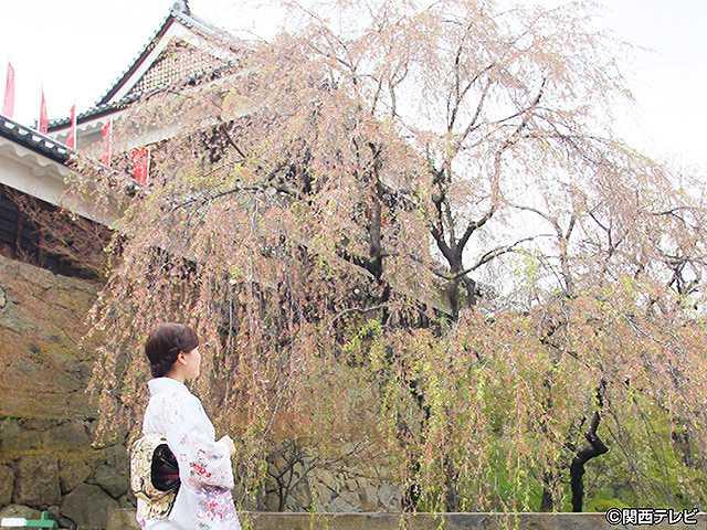 #5 2016/5/8放送 にっぽん城紀行 上田城・1
