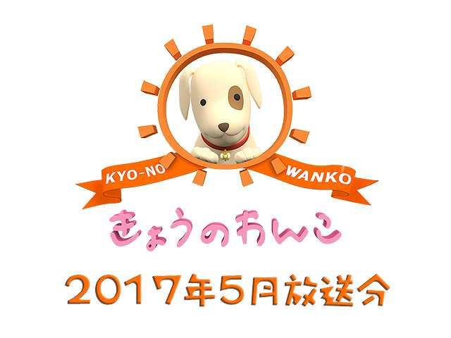 2017年5月放送分 きょうのわんこ