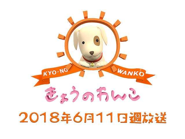 【無料】2018/6/11週放送 きょうのわんこ