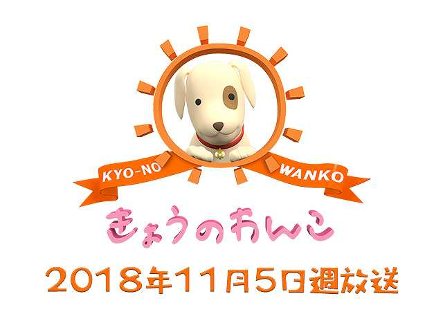 【無料】2018/11/5週放送 きょうのわんこ
