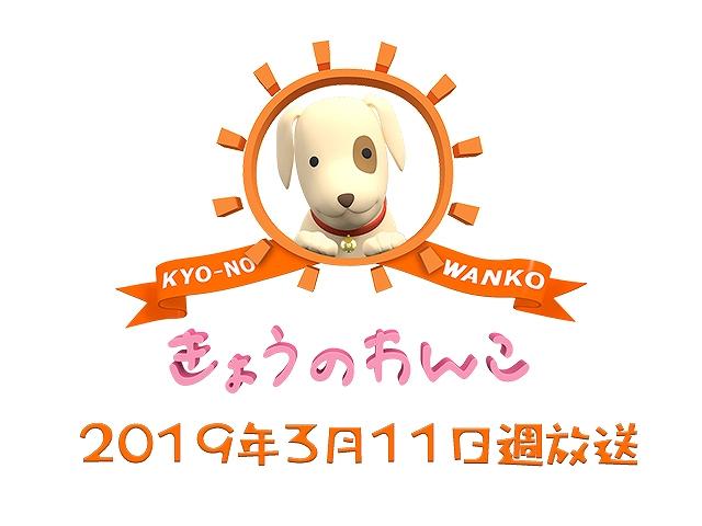 【無料】2019/3/11週放送 きょうのわんこ