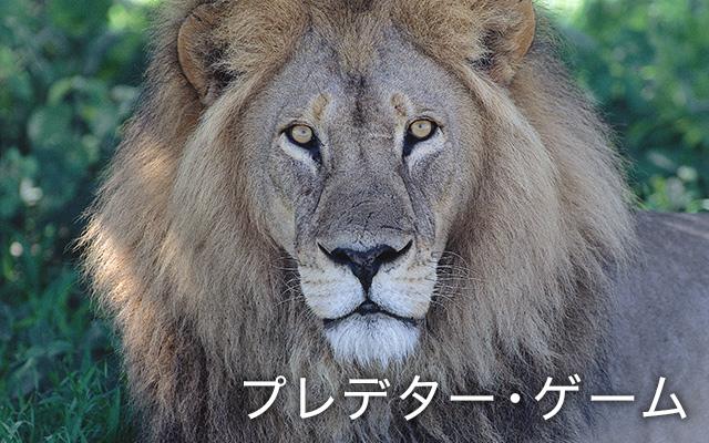 (日本語吹替版)ライオン