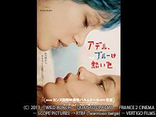 (字幕版)アデル、ブルーは熱い色