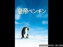 (字幕版)皇帝ペンギン