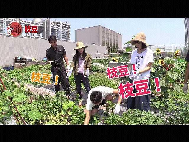 #4 「夏野菜でカレーを作ろう!」