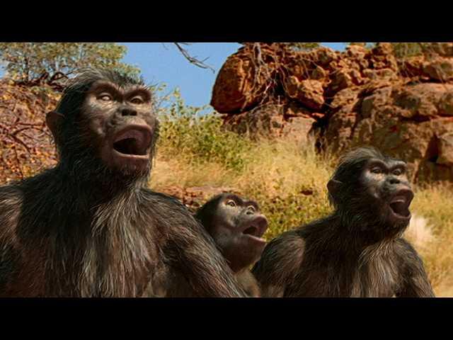 第15話 (日本語吹替版)300万年前 アウストラロピテ…
