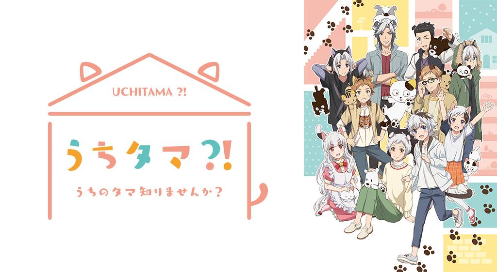 TVアニメ『うちタマ?! ~うちのタマ知りませんか?~』