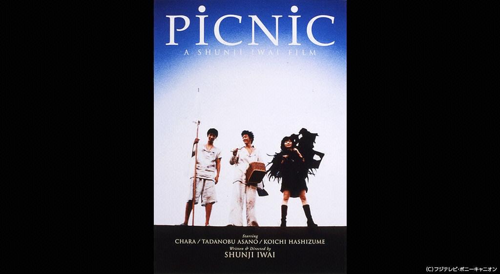 PiCNiC完全版