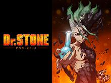 Dr.STONE 第1期