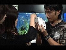 【無料】#2 『傑作選(2) 水槽のガラス貫通!』