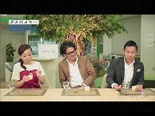 #4 2016/5/19放送 ダイバイヤー