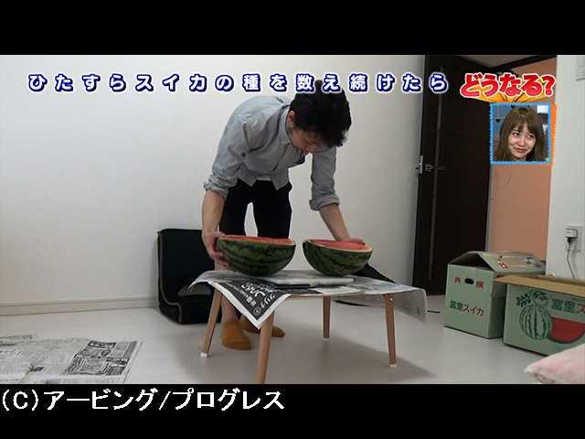 #11 コオロギ女優のカウンセリング道!