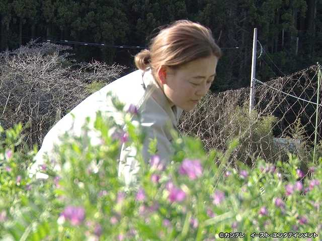 #202 野山に咲く花の専門店!人気の秘密