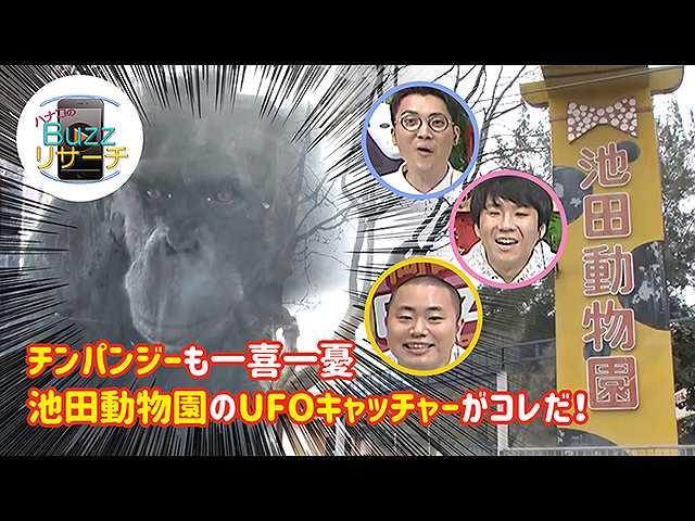 #78 池田動物園の衝撃的なUFOキャッチャー