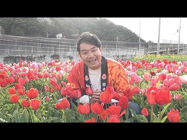 春らんまんの「花むすび」 ~嶺南編~