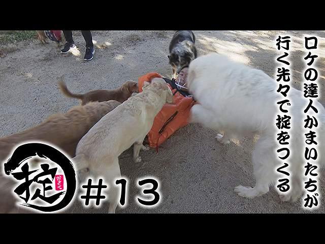#13 謹賀新年!動物たちと触れ合おう!!