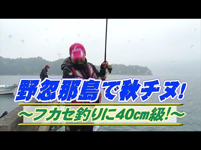 野忽那島で秋チヌ!フカセ釣りに40cm級