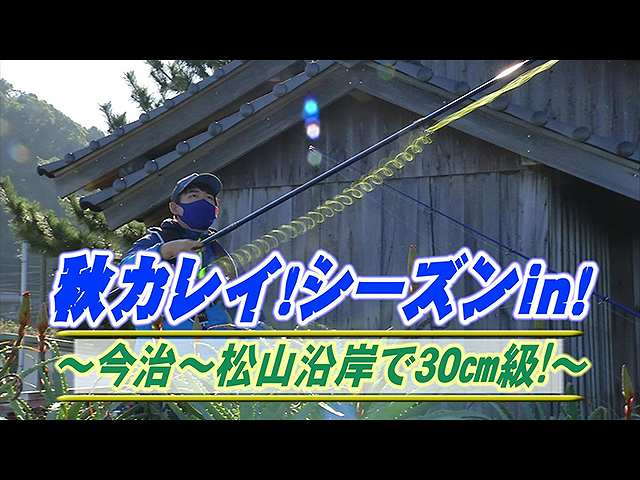 秋ガレイシーズン!今治松山沿岸30cm級