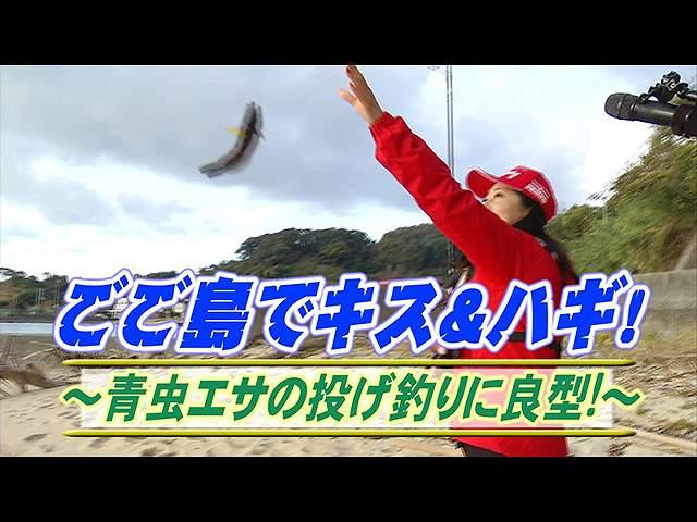 ごご島でキス&ハギ!青虫の投げ釣りに良型