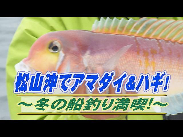 松山沖でアマダイ&ハギ!冬の船釣り満喫!