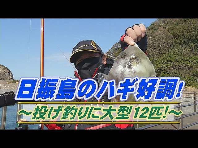 日振島のハギ好調!投げ釣りに大型12匹!