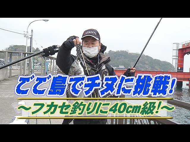 ごご島でチヌ挑戦!フカセ釣り40cm級!