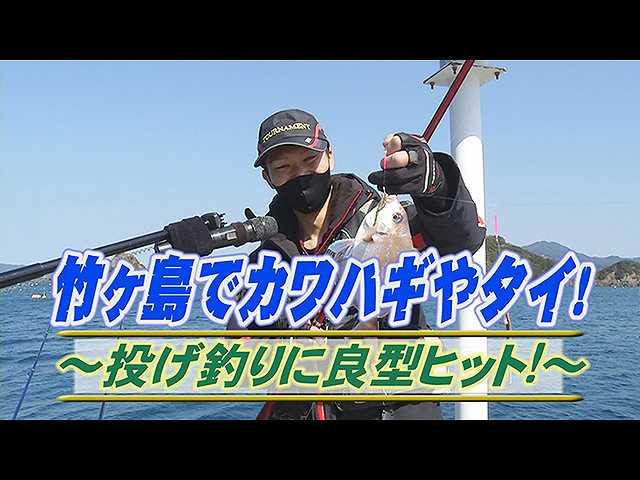 竹ケ島でカワハギやタイ!良型ヒット!