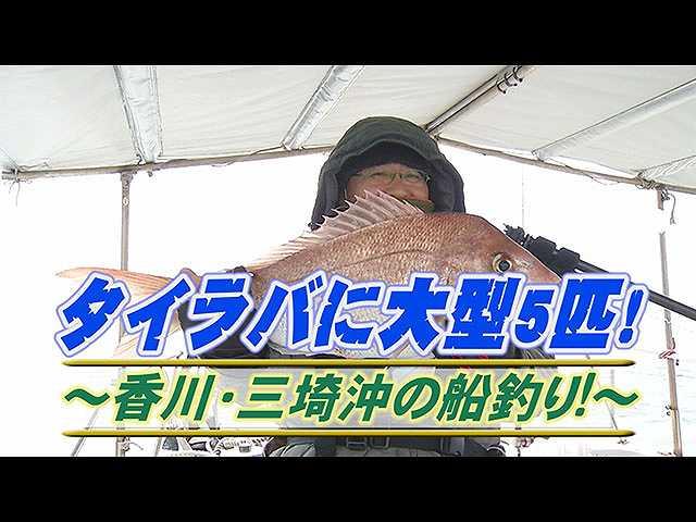 タイラバに大型5匹!香川・三埼沖の船釣り