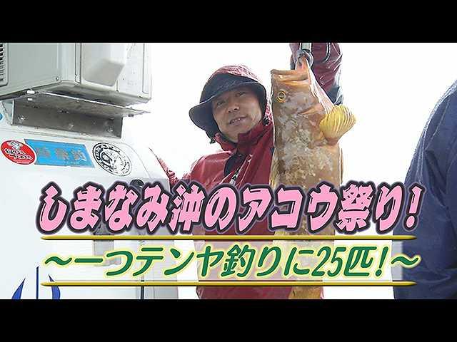 しまなみ沖アコウ祭り!一つテンヤ釣り25匹!