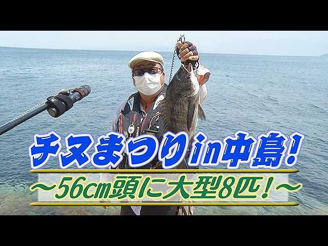 チヌまつりin中島!56cm頭に大型8匹!