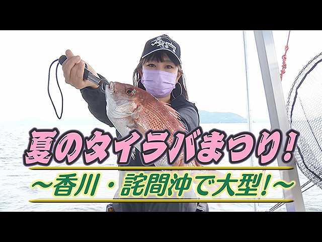 夏のタイラバまつり!香川・詫間沖で大型!