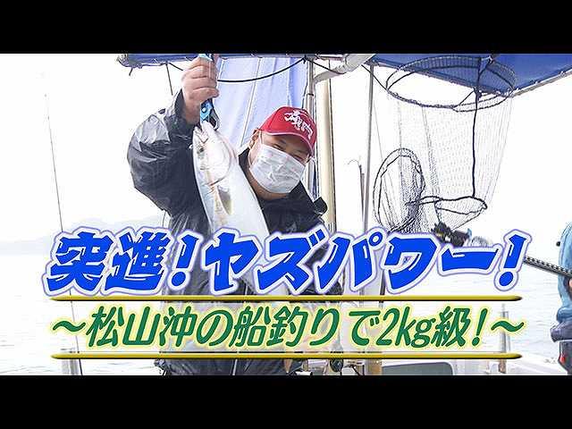 突進ヤズパワー!松山沖の船釣りで2㎏級!