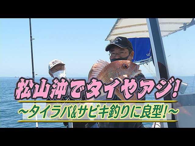 松山沖タイやアジ!タイラバ&サビキ釣り良型
