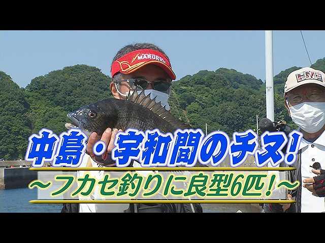 中島・宇和間のチヌ!フカセ釣りに良型6匹!
