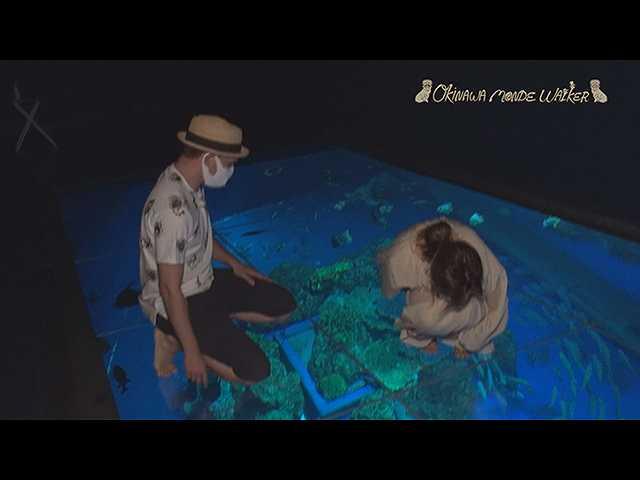 新しいカタチの水族館「DMMかりゆし水族館」