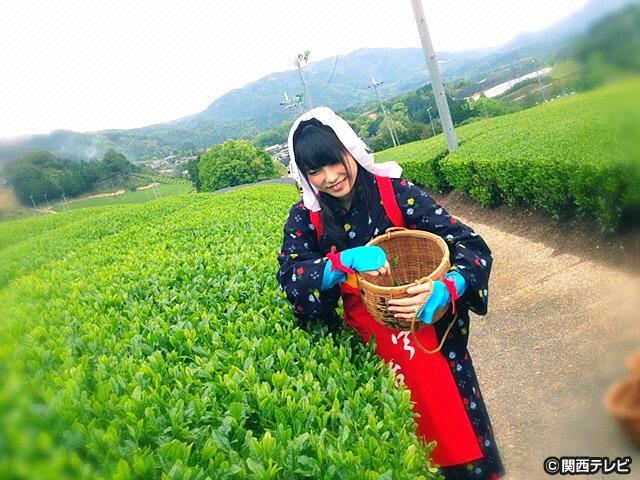 #11 お茶の里・宇治から聞こえる音色