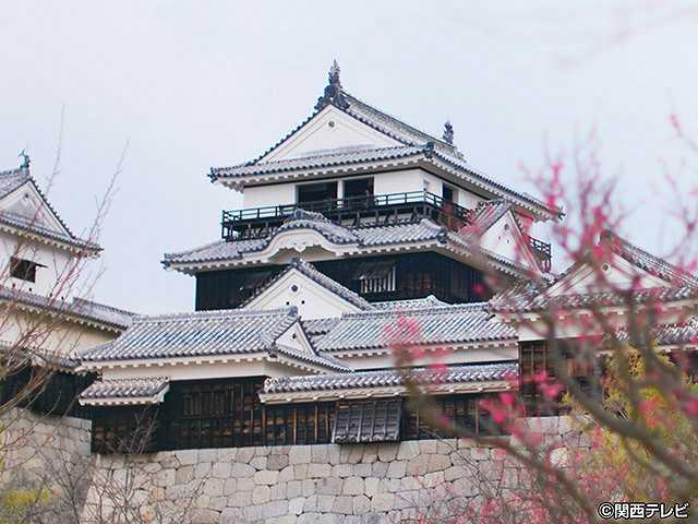 #47 2017/4/2放送 にっぽん城紀行 伊予松山城・1