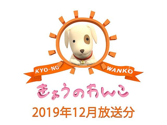 2019年12月放送分 きょうのわんこ