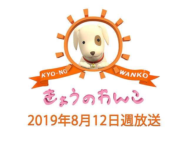 【無料】2019/8/12週放送 きょうのわんこ