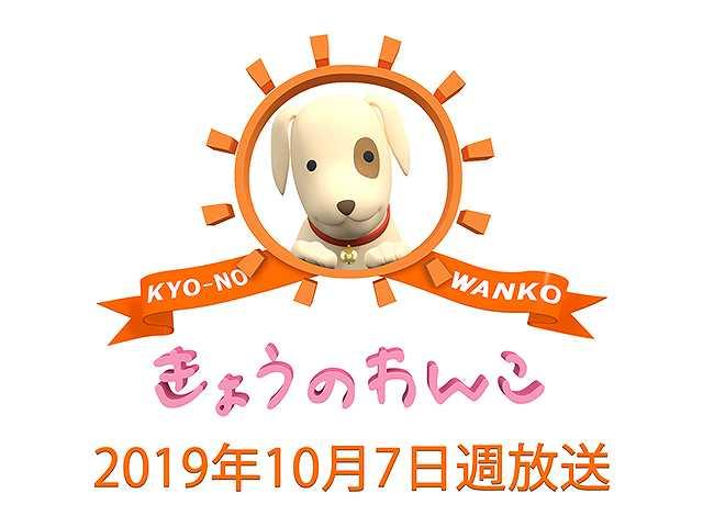 【無料】2019/10/7週放送 きょうのわんこ