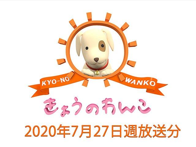 【無料】2020/7/27週放送 きょうのわんこ
