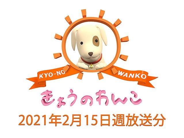 2021/2/15週放送 きょうのわんこ
